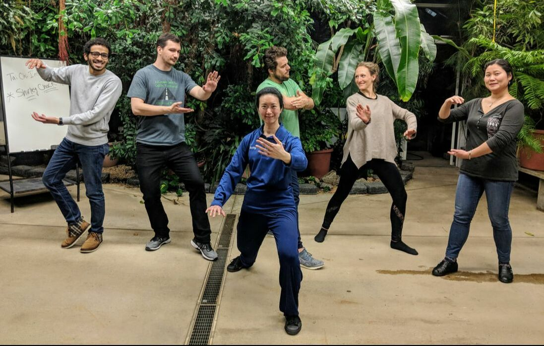 Aiping Tai Chi Center Orange CT, Shirley Chock, corporate wellness, community wellness